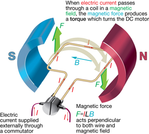 lesson 3 a diagram shows a simple dc motor in which a magnetic force acts on the current